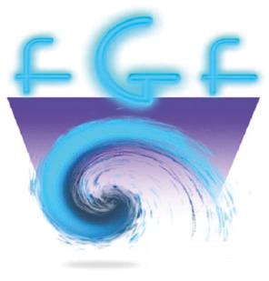 14. Fränkisches Gastroenterologie-Forum